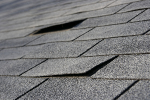 roof shingles damaged by hail